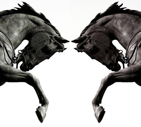 Photo pour Twin horses - image libre de droit