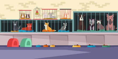 Illustration pour Animal shelter, pet shop flat vector illustration. Adoption center for stray and homeless pets. Cute cats, lonely dogs, guinea pigs, small hamster, bunnies and parrot in cages. Veterinary clinic - image libre de droit