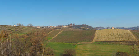 View of the Roero hills in Monta D'Alba, Italy