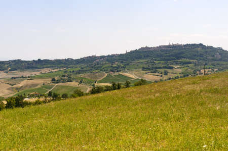 Montepulciano  Siena, Tuscany, Italy , landscape at summer