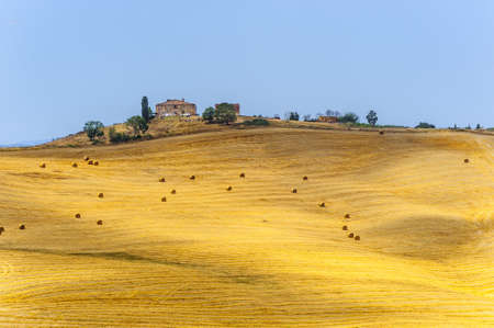 Typical landscape in Val d Orcia
