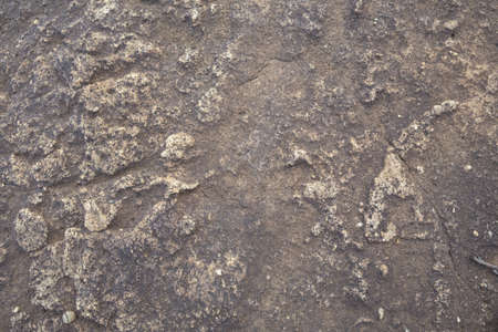 stone texture background that occurs naturally