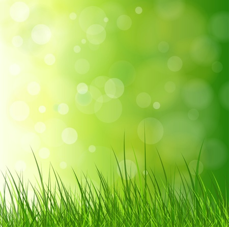 Natural green background with grass.