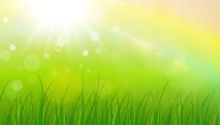 Illustration for Sunny natural background, summer sun with green grass and blurry bokeh as fresh green spring background, nature vector illustration. - Royalty Free Image