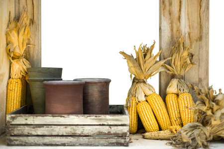 Dry corn at wooden window for decorate with white space for using as background.
