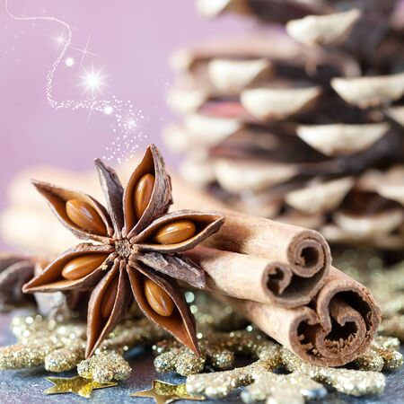 spices for christmas cinnamon and anise