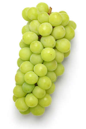Shine muscat, japanese new variety grape isolated on white background