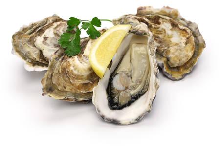 Foto de fresh oysters isolated on white background - Imagen libre de derechos