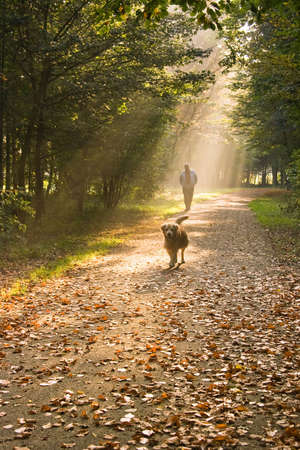 A man and his dog walking in the forest