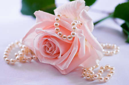 Soft pink rose with a pearl necklace