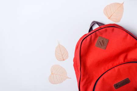 Photo pour Backpack and orange leaves on a blue background. Back to school concept. - image libre de droit