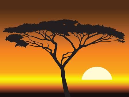 Illustration pour african sunset background.vector illustration - image libre de droit