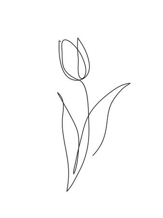 Illustration pour Tulip flower line art. Minimalist contour drawing. One line artwork - image libre de droit