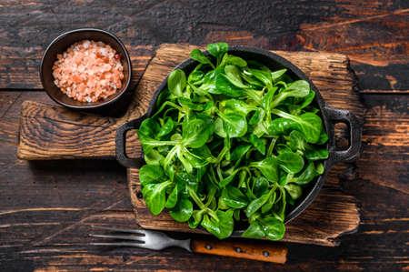 Foto für Fresh Raw green lambs lettuce Corn salad leaves in a pan. Dark wooden background. Top view - Lizenzfreies Bild