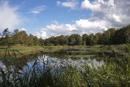 small lake in the dunes of Holland