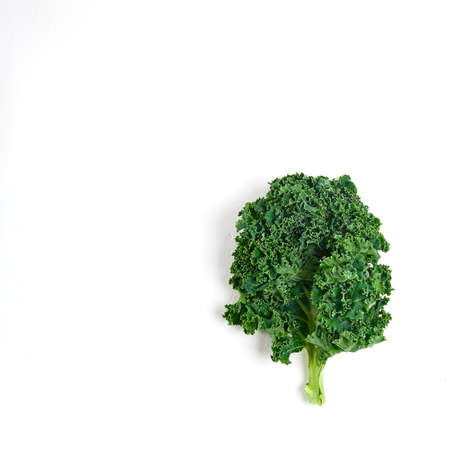 Photo pour leaf of healthy kale salad on a white background, superfood - image libre de droit