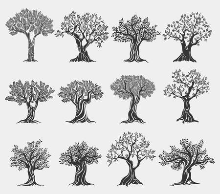 Illustration pour Olive oil trees logo isolated, agriculture icons - image libre de droit