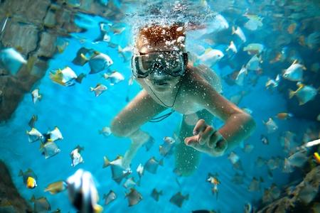 freedive along the brain coral