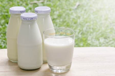 Fresh milk on wooden table in morning light and nature background