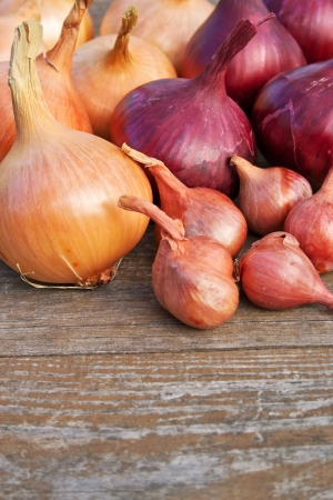 red and yellow onions on wooden table