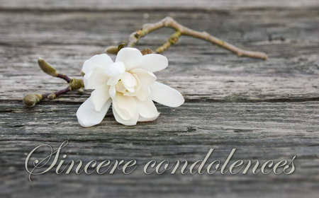 mourning card with white magnolia