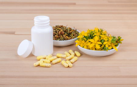 blooming St. John's wort and medicines