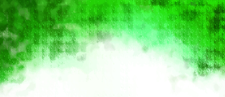 Coroichi160800023