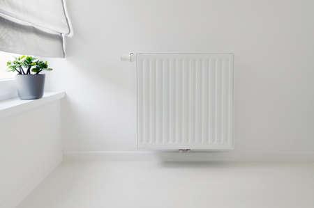 interior detail with radiator and white epoxy floor