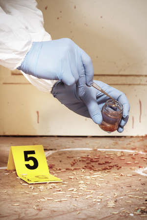 Detail of collecting of fly larva on crime scene by criminologist