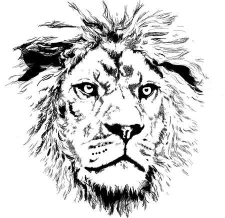 Illustration pour lion head vector - image libre de droit