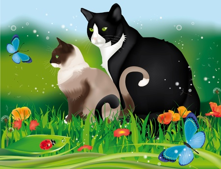 Lovely two cats in the garden among grass, flowers, ladybug and blue butterflies