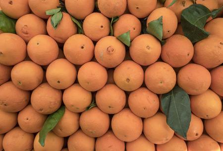 winter season orange fruits