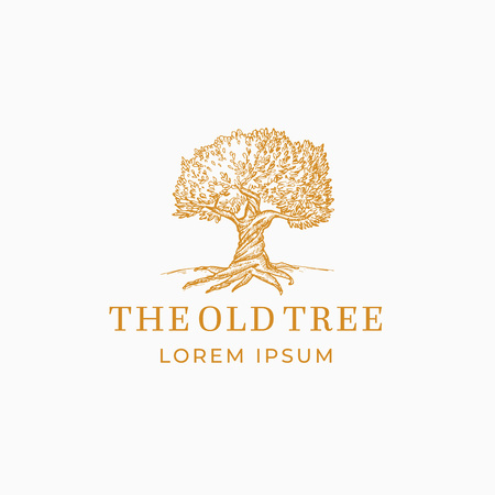Illustration for The Old Tree Abstract Vector Sign, Symbol or Logo Template. Hand Drawn Oak Tree Sketch Sillhouette with Retro Typography. Vintage Emblem. - Royalty Free Image