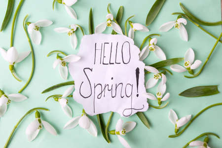 Hello spring calligraphy note decorated with snowdrops