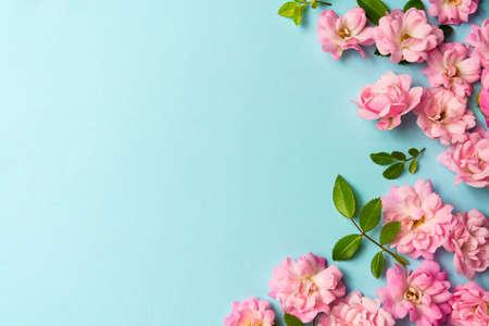 Photo pour Pink flowers on blue background spring arrangement with copy space - image libre de droit