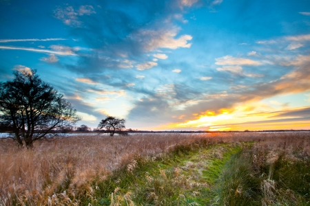Rural Trail through Grassy Field on Lakeside during Sunset