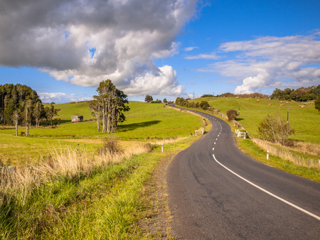 Road Trip Scene New Zealand