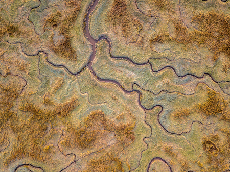 Photo pour Aerial top down view of tidal marshland with natural meandering drainage system in Verdronken land van Saeftinghe in Zeeland, Netherlands - image libre de droit