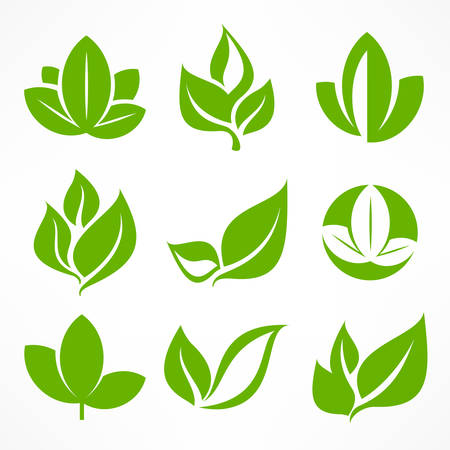 Green leaf signs, design elements, vector illustration.のイラスト素材