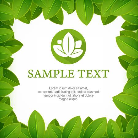 Spring frame, fresh green leaves border on white, vector illustration