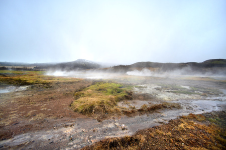 Geothermic activity creates steam in an Icelandic bog