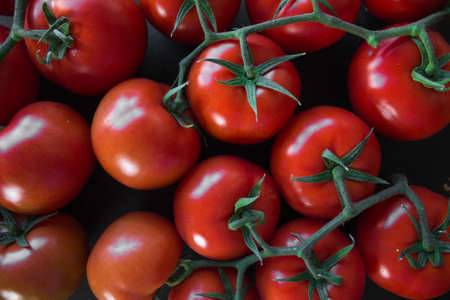 Photo pour Top view of some perfect red tomatoes for backgrounds - image libre de droit