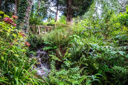 Vegetation in Jardin des Plantes garden public park in Toulouse France