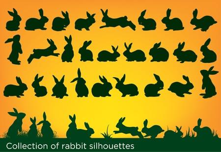 Ilustración de collection of rabbit silhouettes - Imagen libre de derechos