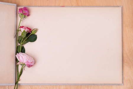 open photo album on a table and three roses