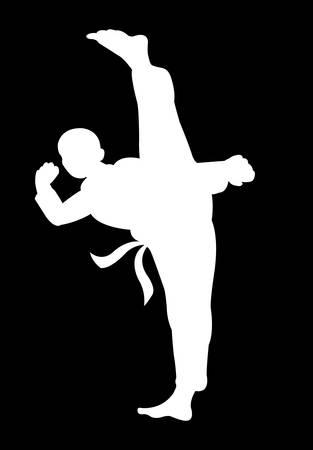 beautiful martial shadow movement, silhouette kungfu
