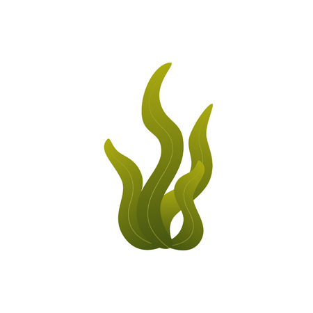 Illustration pour underwater seaweed in flat style - image libre de droit