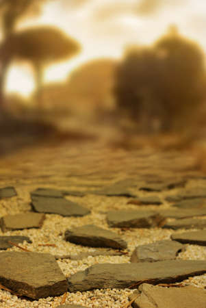 Ancient cobblestone road with shallow depth of field