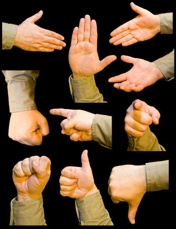 ten similar hands gesturing in various ways
