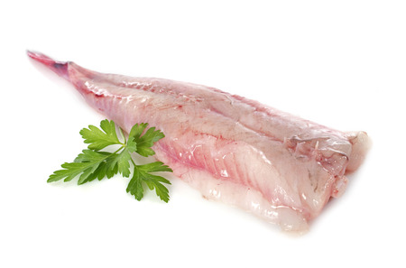 picture of monkfish in front of white background